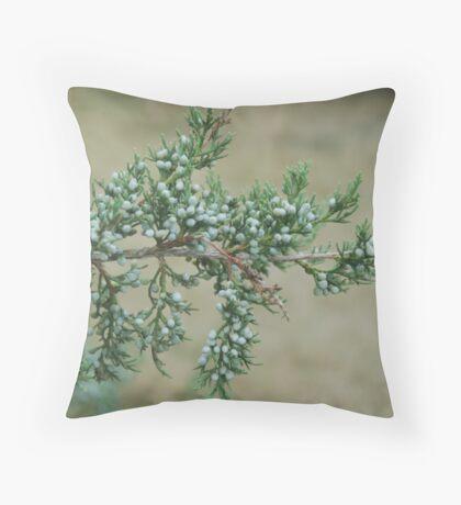Junniper Berries Throw Pillow
