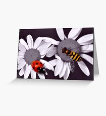 Selective colour Greeting Card