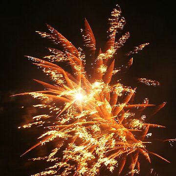 Golden Fireworks by joybellejoy