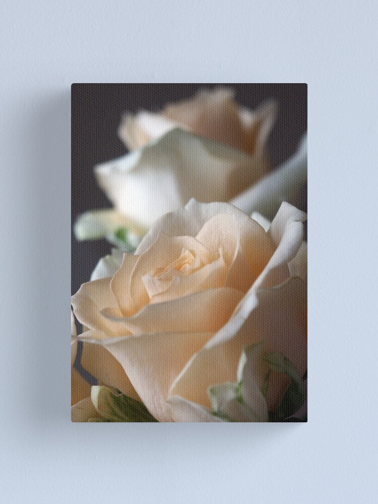 Alternate view of Apricots Canvas Print