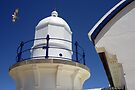 Lighthouse and the seaeagle by Sandro Rossi