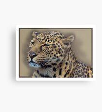Leopard Metallbild