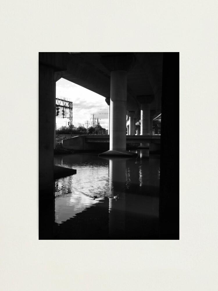 Alternate view of Two Ducks Swimming Photographic Print