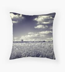 Following Dreams Throw Pillow