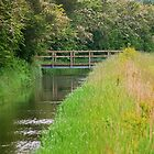 Bridge at the Fen by SweetLemon