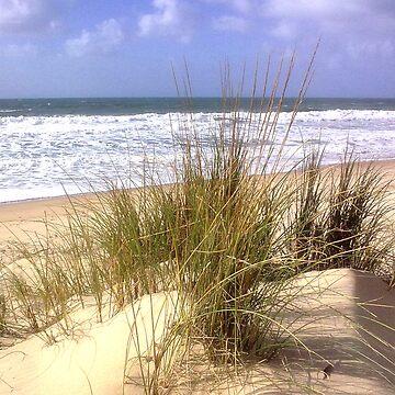 Praia do Rei, Portugal von GODLING