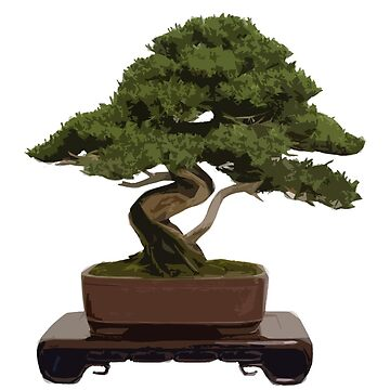Bonsai by s00bar00
