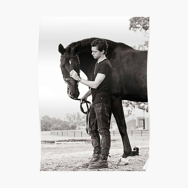 Tom Holland Dark Horse Poster
