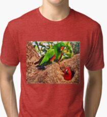 Colorfully Bright Tri-blend T-Shirt