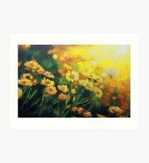 Daisies in the Sun landscape Flower painting by Samuel Durkin Art Print