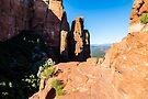 Cathedral Rock - Flat Overlook. by eegibson