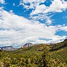 Sedona - Boynton Canyon Trail Panorama by eegibson
