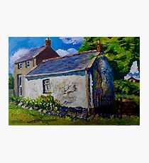 Forget-me-not, Aunt Ritas Old Cottage, Ballylumford, Islandmagee. Photographic Print