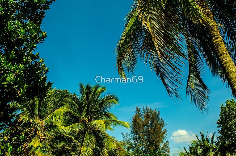 Trees' Heads by Charman69