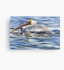 Cedar Point Pelican Metal Print