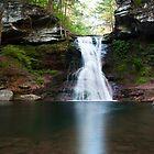 Sullivan Falls In June by Gene Walls