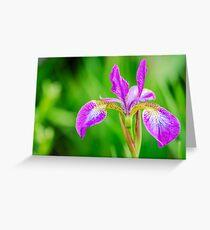 Poetic Purple Flower Greeting Card