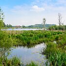 Nature reserve Bourgoyen in Ghent, Belgium  by 7horses