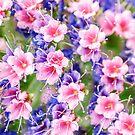Fairytale Flowers von MMPhotographyUK