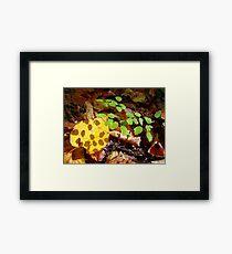 Shaded Leaf Framed Print