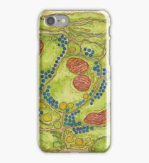Neuronal Synapses Micrograph iPhone Case/Skin