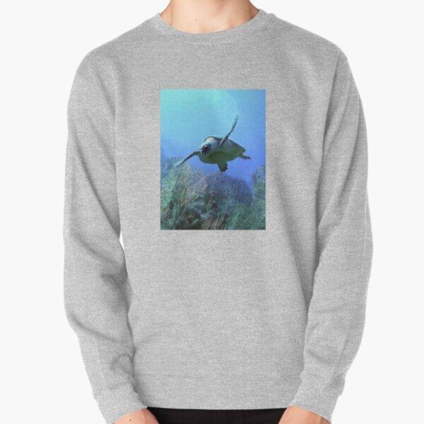 Turtle Pullover Sweatshirt