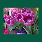 Forever Springtime Tulips Throw Pillow! (Green Border) by Pat Yager