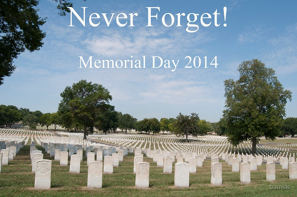 Memorial Day 2014 by barnsis
