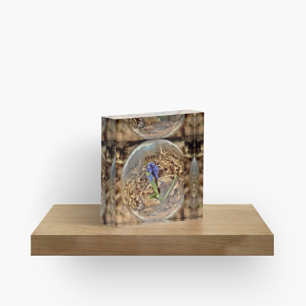 SPRING IS HERE BY YANNIS LOBAINA Acrylic Block