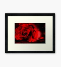 Red Roze Framed Print