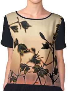 Early Spring Sunset Chiffon Top