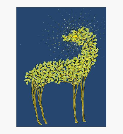 Tree horse with sunburst Photographic Print