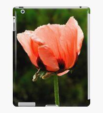 'Orlando Bloom'  iPad Case/Skin