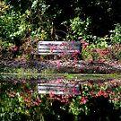 God leads me beside still waters; God restores my soul. by Paula Tohline  Calhoun