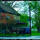 Amish Buggy by Littlehalfwings
