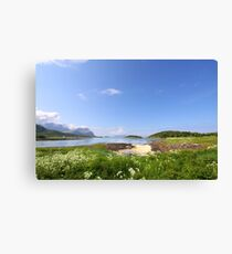 Norwegian Landscape Canvas Print