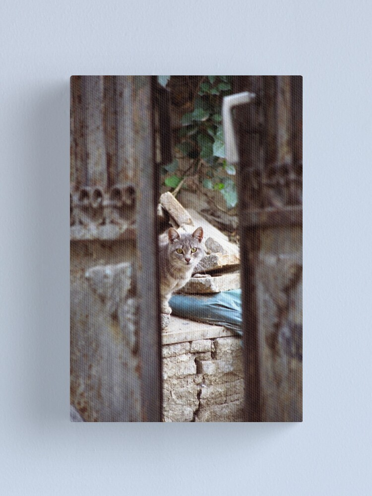 Alternate view of I See You Canvas Print