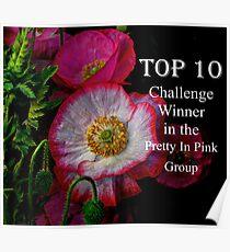 Top Ten Banner  Poster