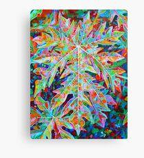 Sunrise Solo Papaya Canvas Print