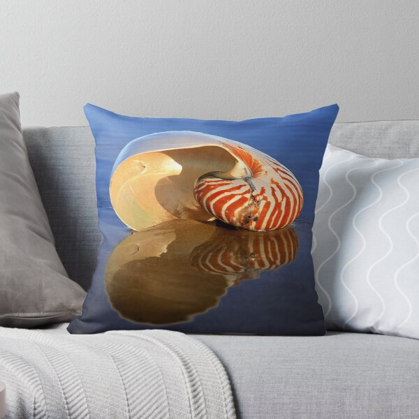 Washed Up Pillow and Tote Throw Pillow