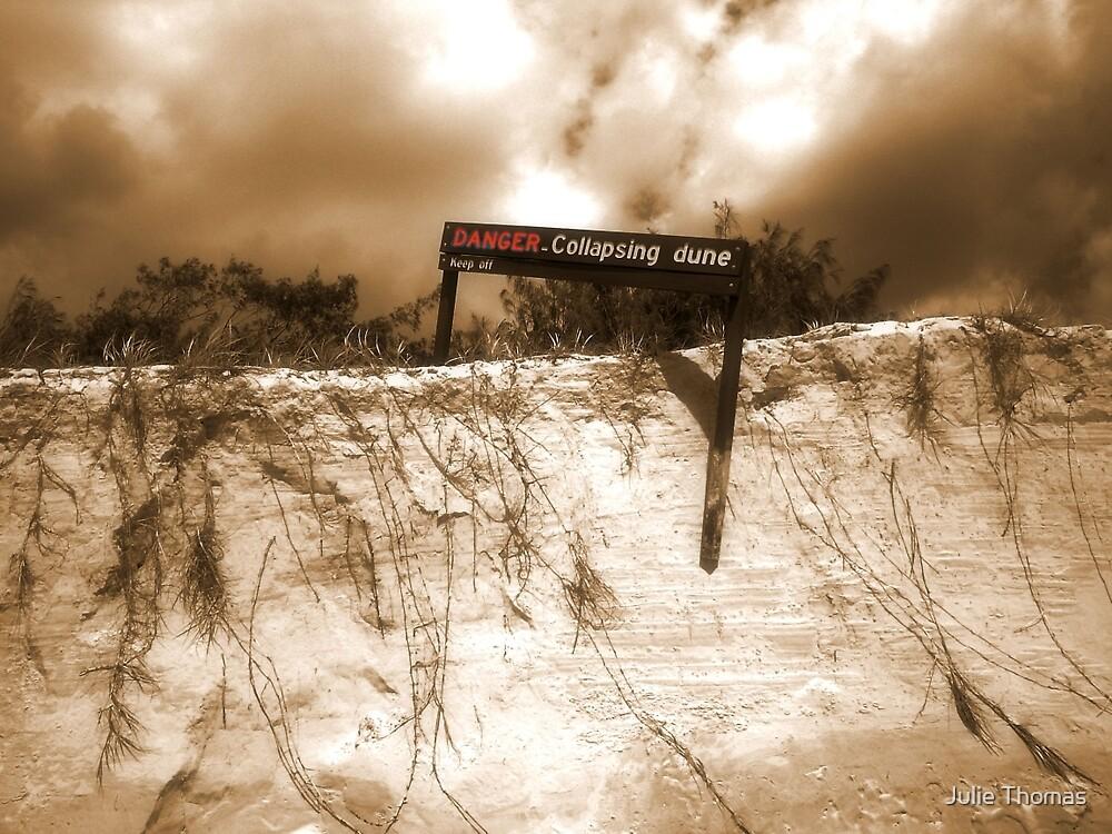 Danger by Julie Thomas