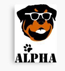 Geeky Alpha Canvas Print