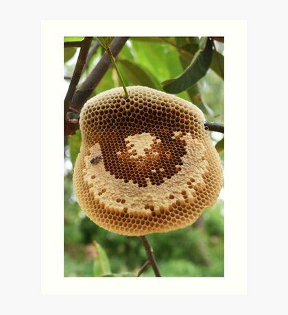 Bees on honycomb Art Print
