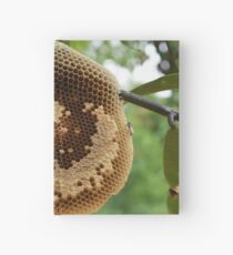 Bees on honeycomb Hardcover Journal