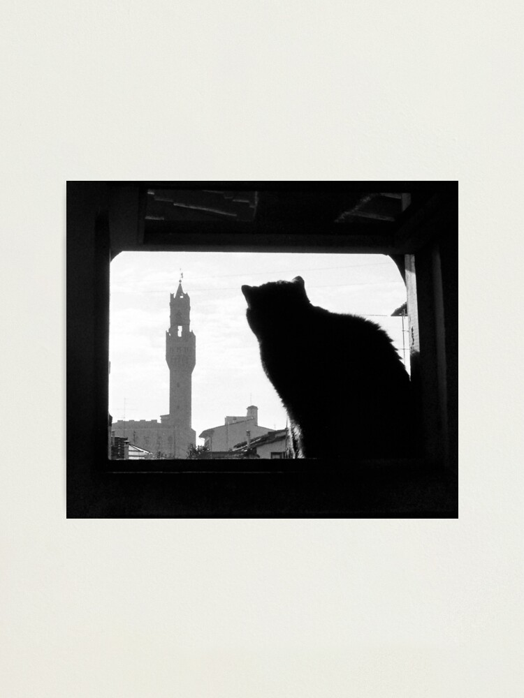 Alternate view of Silhouette, Florence Photographic Print