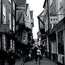 The Shambles, York by Robert Steadman