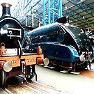 Mallard, National Rail Museum, York by Robert Steadman