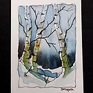 Birch Trees by pinetreeart