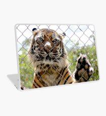 Sumatran Tiger Laptop Skin