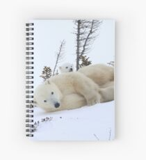 Mother polar bear stretching Spiral Notebook